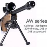 Accuracy International AW .300 Win Magnum
